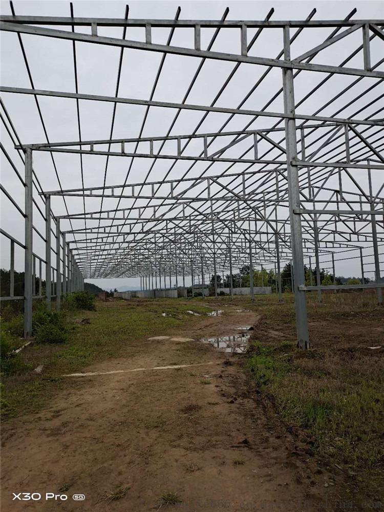 生物有機肥設備報價—廠家免費技術指導—沙坡頭