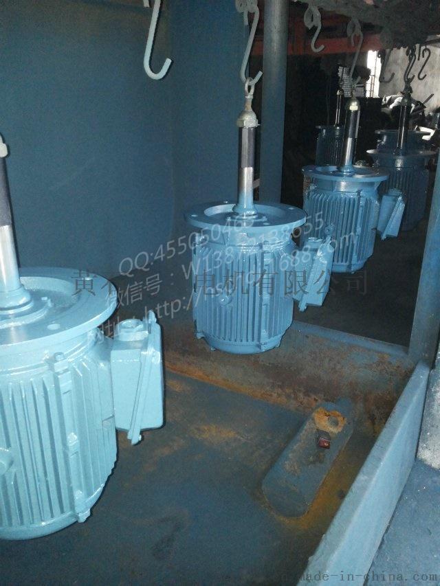 冷却塔防水专用电机