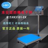 宏力XK3101-EX防爆台秤