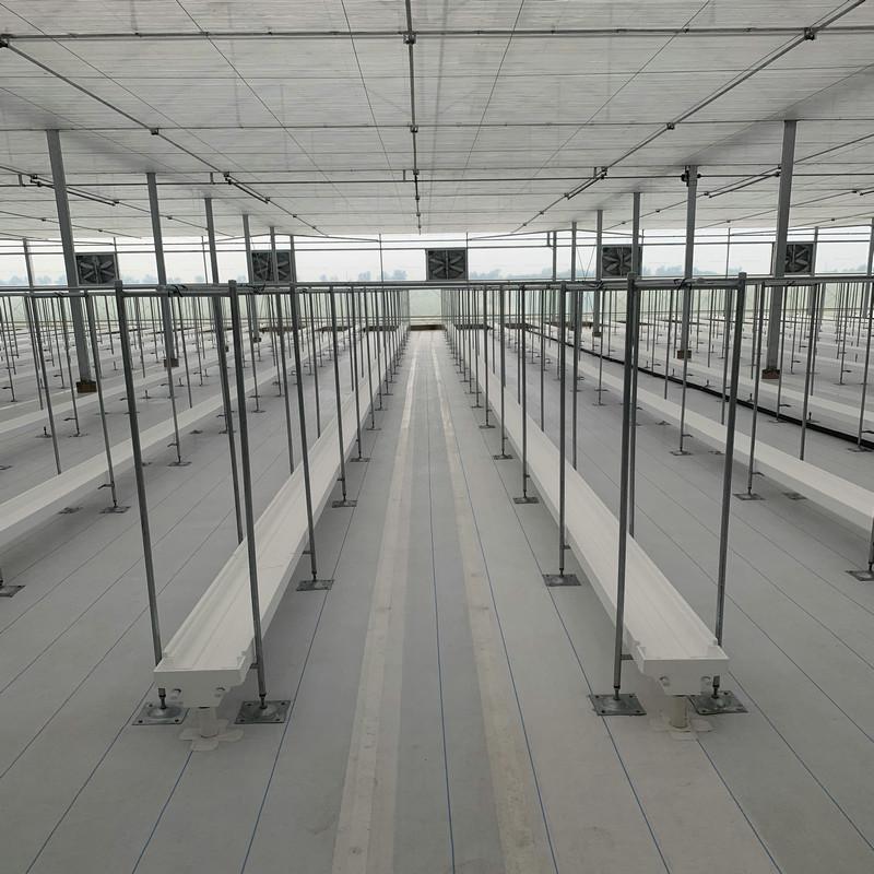 白色除草地布,天津1.5米宽PP地布