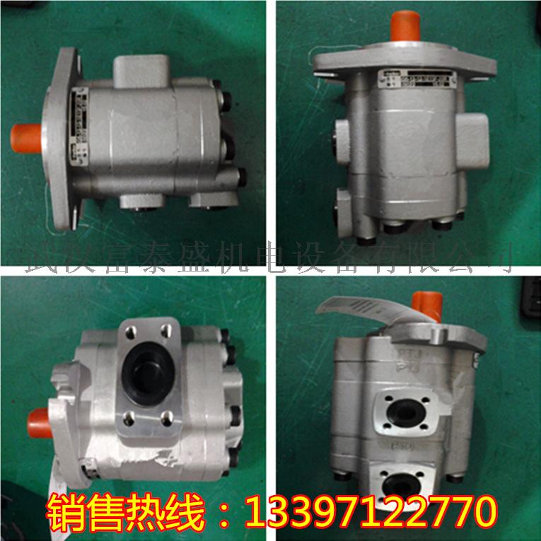【批发】G5-16-16-1E13S-20L齿轮油泵