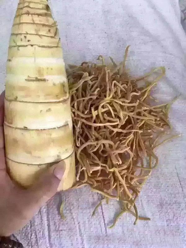地摊竹笋丝特产批发散装干竹笋丝厂家
