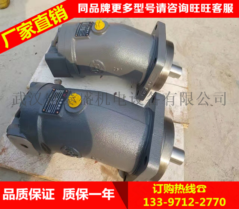 徐工起重机QY20B-50B先导卷扬马达A6V107HD1DFZ2065徐工卷扬马达液压泵