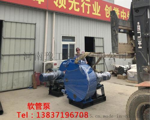 怒江东营化工原料软管泵扬程多高