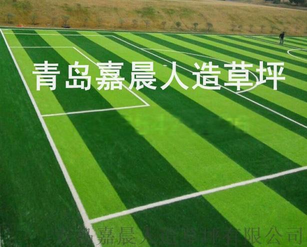 足球场人造草坪人工草皮塑料假草坪820245065