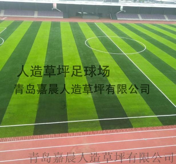 足球场人造草坪人工草皮塑料假草坪99736445