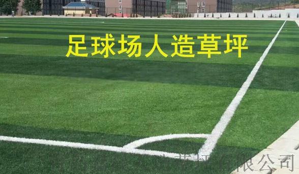 足球场人造草坪人工草皮塑料假草坪99736325