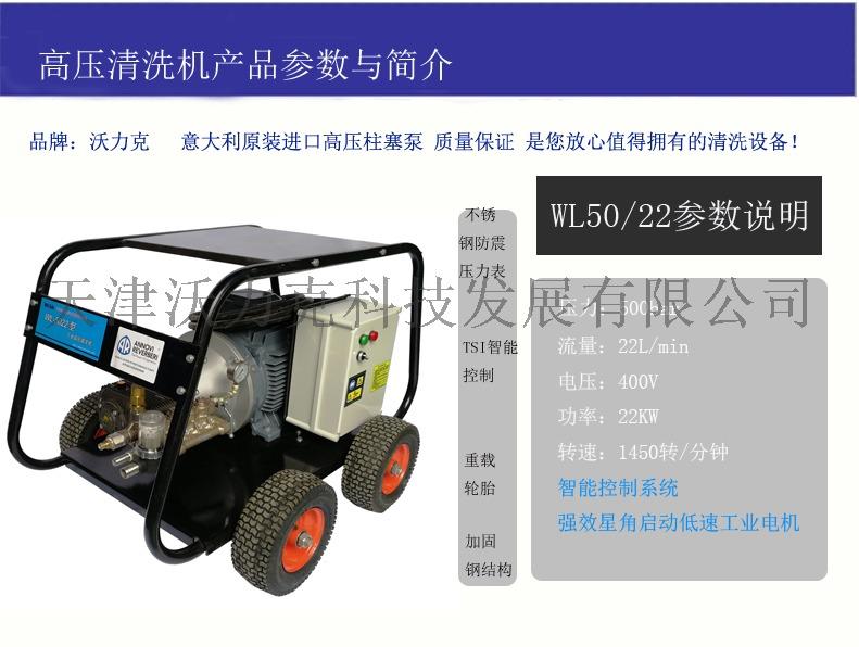 WL5022高壓清洗機進口.jpg
