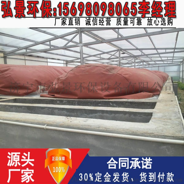 沼气工程-畜禽粪污处理设备建设施工图纸及厂家100754162
