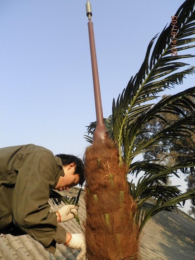 35米仿生樹通訊塔,仿生松樹信號塔,模擬椰樹避雷針817412402