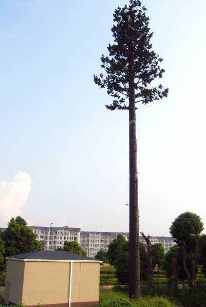 35米仿生樹通訊塔,仿生松樹信號塔,模擬椰樹避雷針817412392