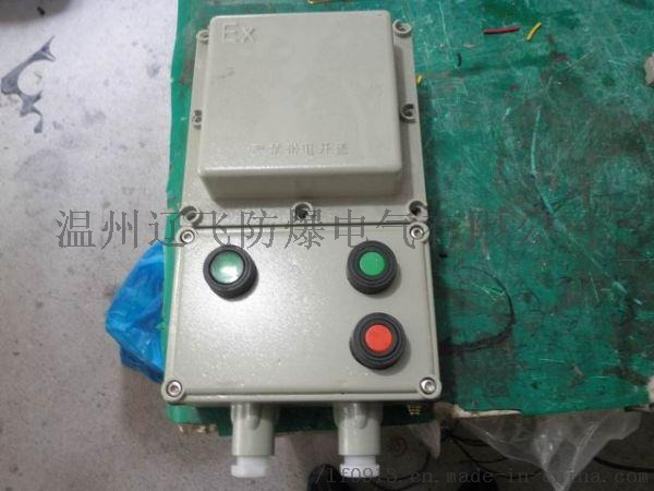 BDZ52-100/3P防爆型隔离开关箱818446482