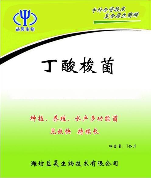 微生態菌劑丁酸梭菌 山東益昊生物丁酸梭菌820714252