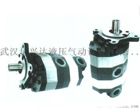 2CB-FC10/10-FL齒輪油泵835000225