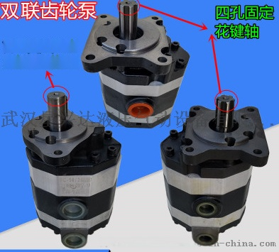 2CB-FC10/10-FL齒輪油泵106332865