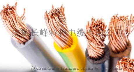 雙芯聚氯乙烯絕緣聚氯乙烯護套銅芯扁護套線106922105
