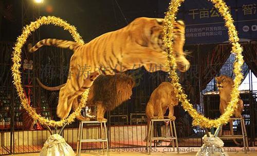 上海涛涛马戏团全国巡演出租国内外马戏团表演巡演出租103497265