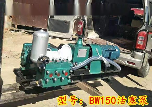 BW150-1.jpg
