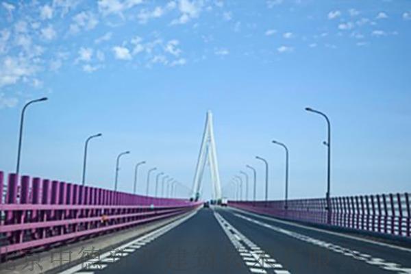 T80强渗膏说明书杭州湾大桥.jpg