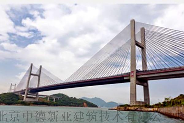 T80强渗膏说明书香港青马大桥.jpg