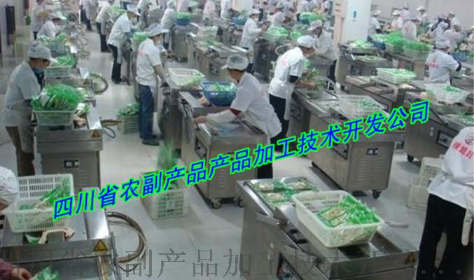 青花椒保鲜设备,花椒保鲜加工设备,鲜花椒生产设备97719732