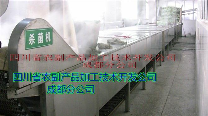 大头菜生产设备,方便大头菜设备,调味大头菜设备21214592