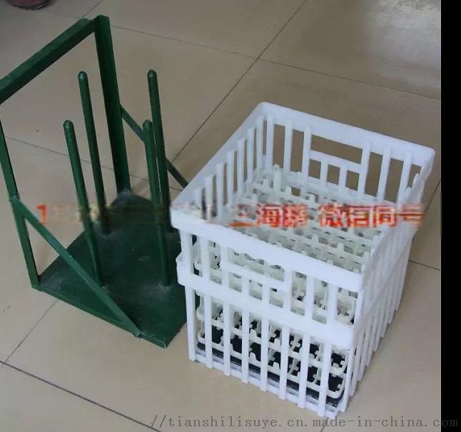 塑料大种蛋箱 种蛋周转箱  禽蛋  箱897679375