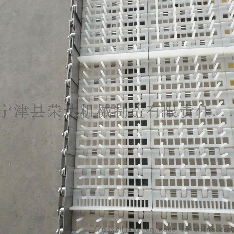 塑料鏈板輸送帶3.jpg