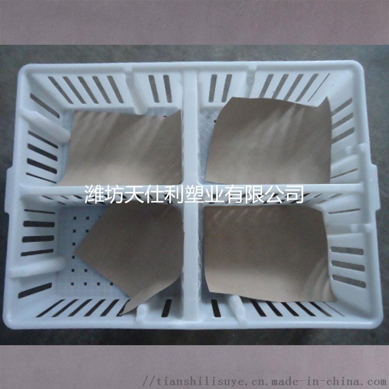 运输筐 四格  运输笼 塑料  筐133704105