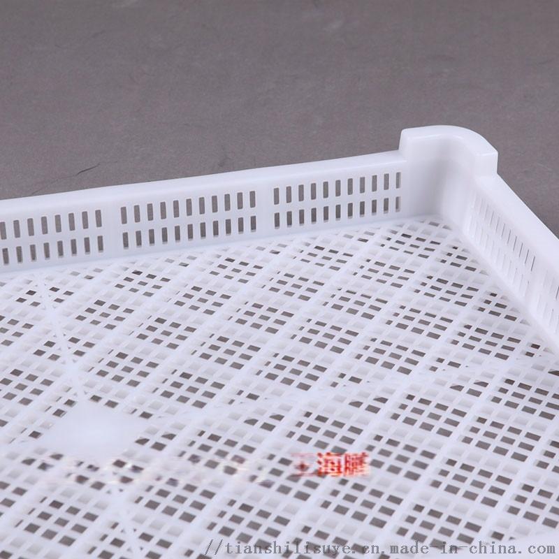 山东供应塑料单冻盘厂家 海鲜冷库用单冻盘112875592