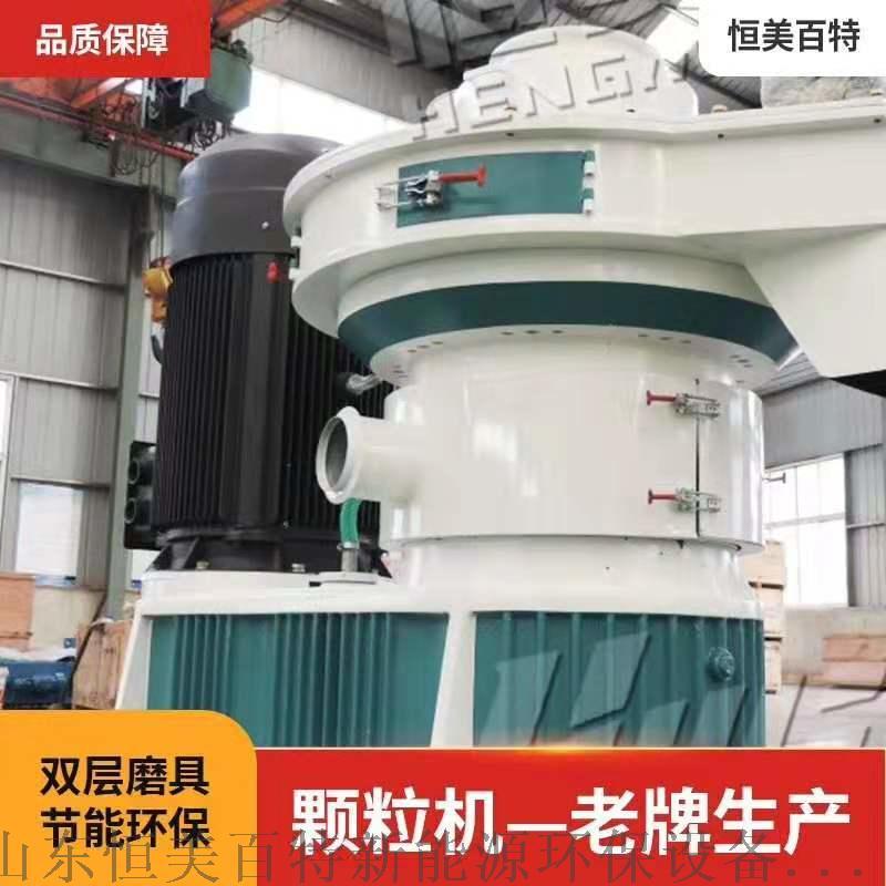 生物质颗粒机高产量木屑颗粒机成套生产线108694742