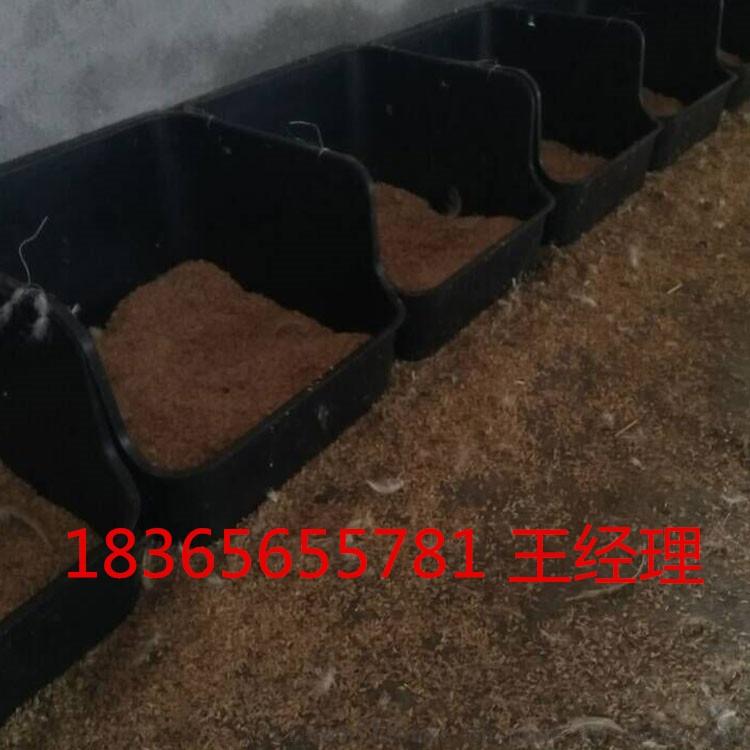 山东天仕利黑色鸭产蛋窝 鸭产蛋窝规格 鸭产蛋窝图片112369322