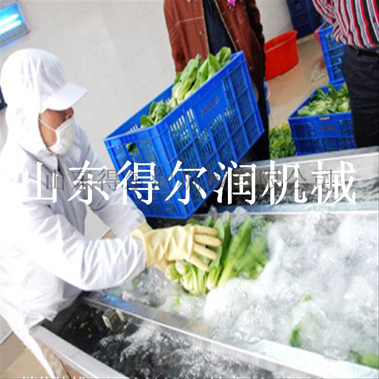 气泡油菜清洗机.png