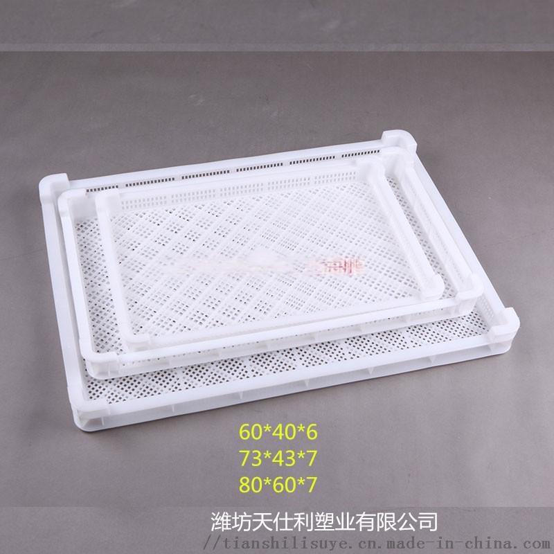 冷凍海鮮塑料單凍盤 冷庫塑料單凍盤 塑料單凍盤報價840261422
