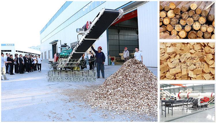 花生壳成型机 河北木屑颗粒机厂家113139292