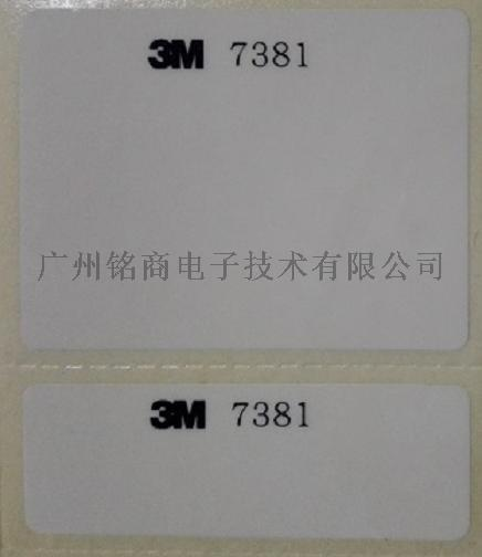 3M7381-2.jpg