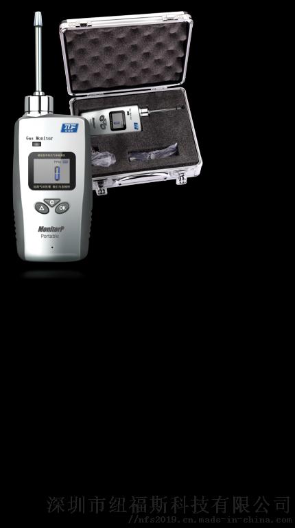 大众便携式Tion-100.png