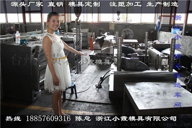 黄岩塑胶模具厂家 定做塑胶车门模具加工863736242
