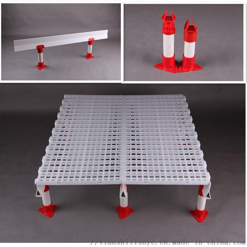 优质鸡舍漏粪地板塑料鸡地板鸡鸭漏粪板厂家132382612