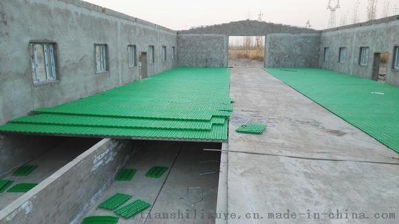 漏粪板厂家   塑料漏粪板 供应羊用漏粪板121046802
