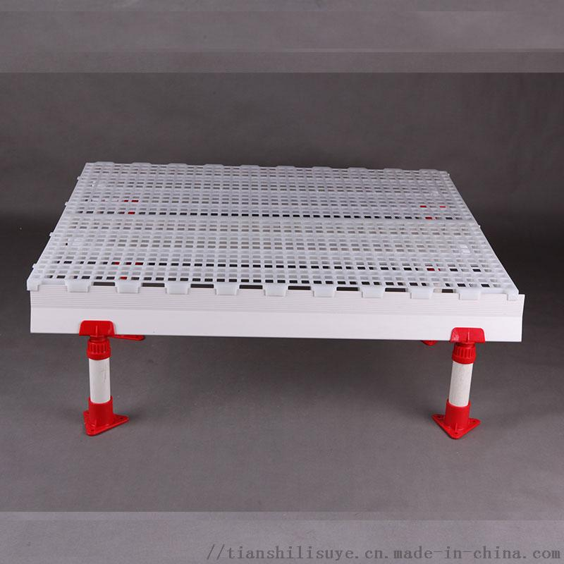 优质鸡舍漏粪地板塑料鸡地板鸡鸭漏粪板厂家132382602
