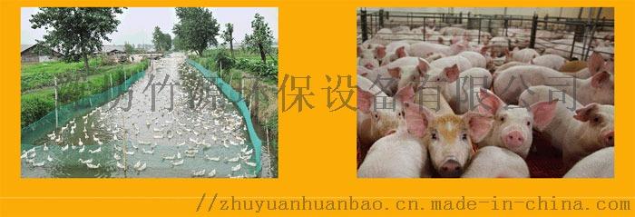 成都养猪场 气浮一体化污水处理设备 竹源定制80038152
