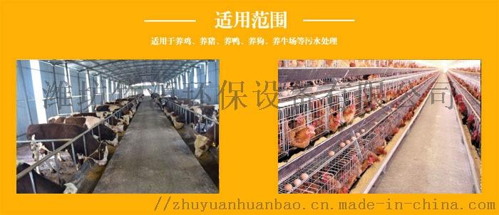 成都养猪场 气浮一体化污水处理设备 竹源定制80038142