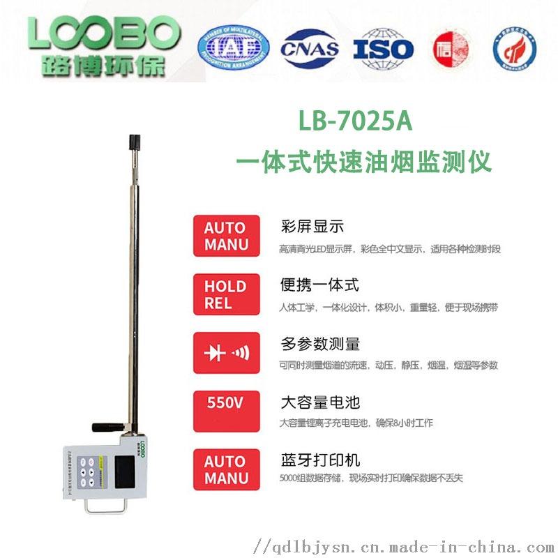 易于携带 操作简便 LB-7025A油烟检测仪135160362