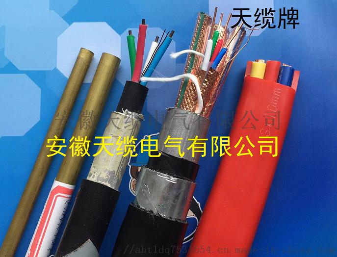 长途对称低频电缆HEYFLT23/安徽天缆电气901883865