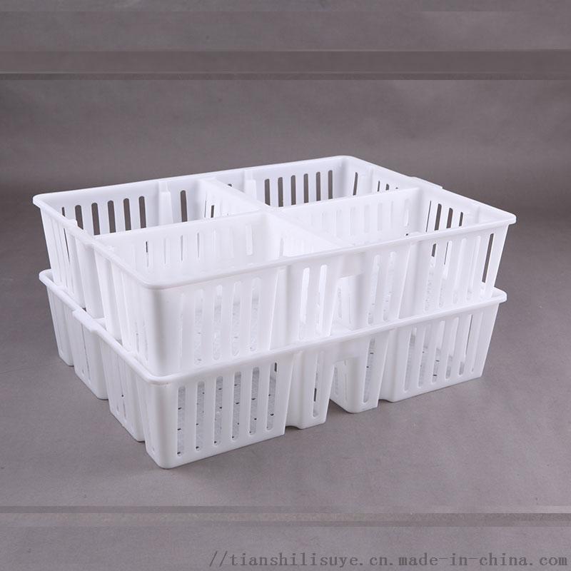 鸡苗塑料周转箱 鸡苗运输箱 雏鸡周转箱854184812