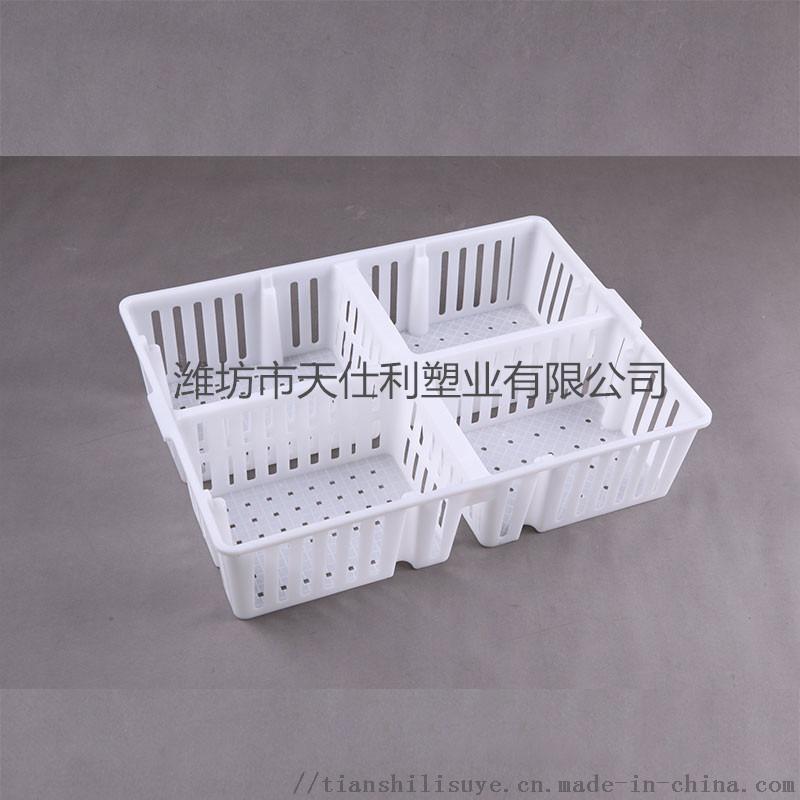 天仕利全新原料鸡苗箱 透  苗箱 优质鸡苗箱845106532