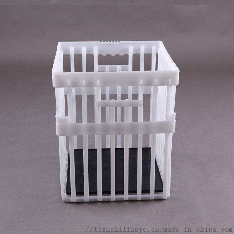 新式塑料种蛋筐 配孵化器用种蛋筐 种蛋运输箱850525682
