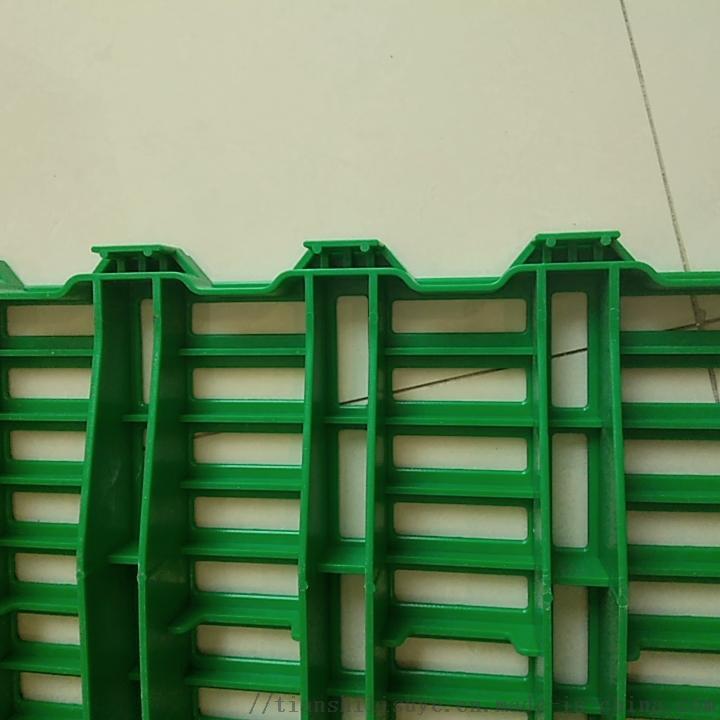 新式羊圈塑料羊床羊用漏粪垫板羊用漏粪床873262432