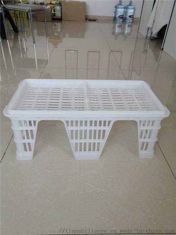 厂家供应塑料种蛋筐种蛋运输筐配蛋托用蛋筐129012242